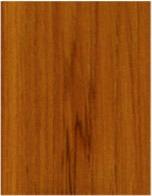 teak wood species